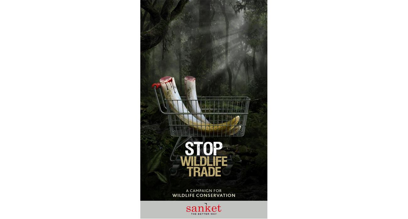 Wildlife Digital Campaign